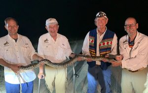 Python Hunters with Python